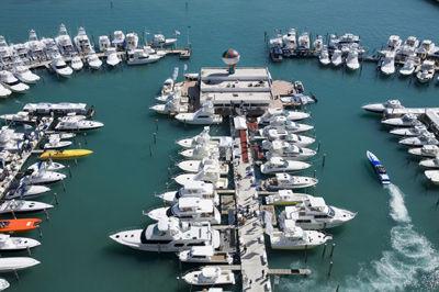 无法披露年报:游艇旅游企业阿尔法将被强制摘牌