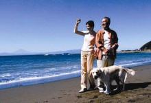 福州:看好候鸟式养老旅游,年内推旅游专列