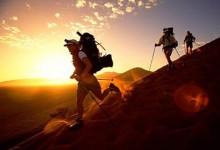 调研:旅游说走就走 五成以上仍做行程规划