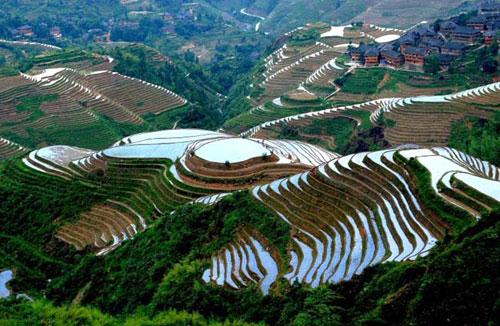 桂林旅游:财报显示上半年客流增长扭亏为盈