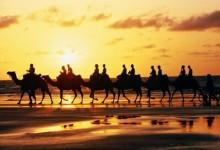 王洁平:必须以敬畏之心做好文化遗产旅游