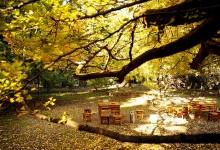 胡润榜单:2014全球12月优选生态旅游目的地