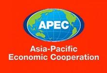 APEC:出境游人数翻四倍,周边游增幅八成