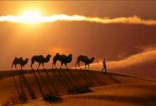 国家旅游局:2015美丽中国丝绸之路旅游年