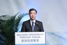 汪洋:深化旅游体制改革 政府市场两只手作用