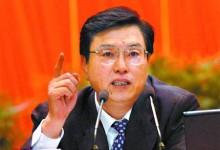 张德江:强化旅游市场综合治理促进健康发展