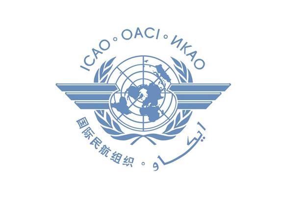 国际民航组织:选出首位中国籍女秘书长