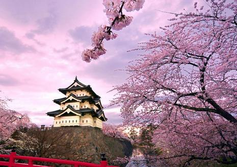 美团点评大数据:赴日赏樱游将一直火到五一