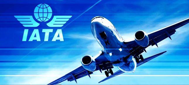 IATA:国际航空客运市场出现温和回升势头