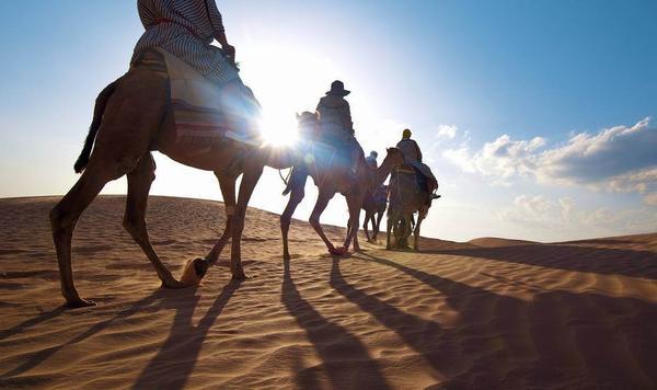 世界旅游组织:年度视频大赛 得奖视频赏析