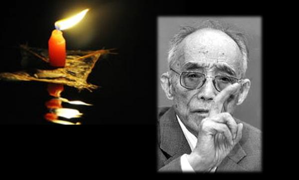 """哀悼:""""中国农村改革之父""""杜润生逝世"""