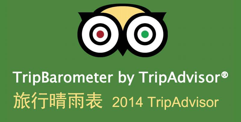 TripAdvisor:旅行晴雨表 聚焦社交旅行者