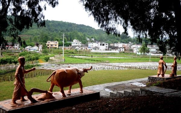 通知:2015休闲农业乡村旅游示范县示范点