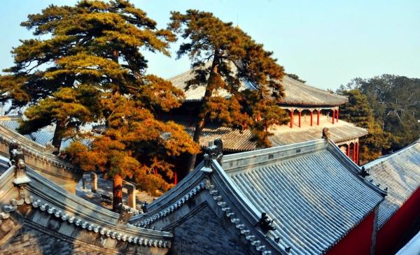 北京文化:潭柘寺与戒台寺退市 发生了什么