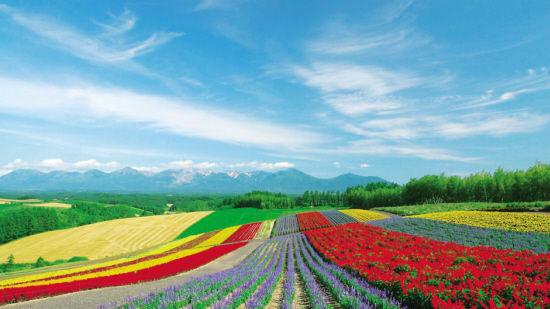 日媒:北海道旅行指南针对中国游客修改措辞