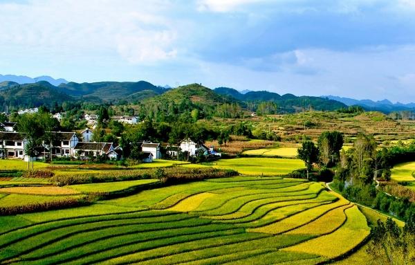 贵州:避暑旅游天时地利人和 开拓市场大有可为