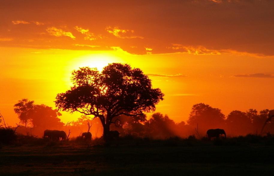 非洲旅游:迎来发展黄金期 避暑 摄影成热门