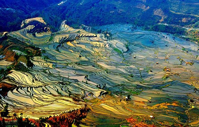 评论:中国旅游标准化建设的优化完善之路