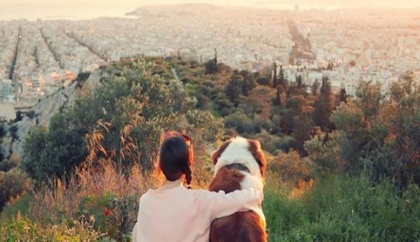 英国游客:借分享经济 降低带宠物旅游的成本