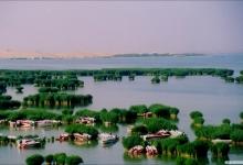 宁夏回族自治区发布乡村旅游发展三年行动方案