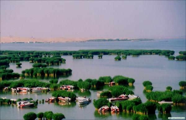 宁夏:打造国际旅游目的地 建全域旅游示范区
