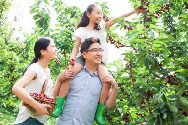 凯撒旅游:亲子游研学游成暑期旅游市场主力