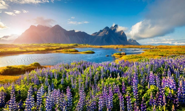 TripCreator:冰岛行程策划商融资200万美元