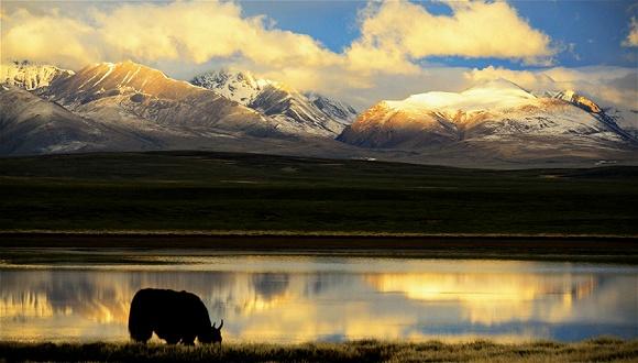 青藏两省区:将联手打造高原国际旅游目的地