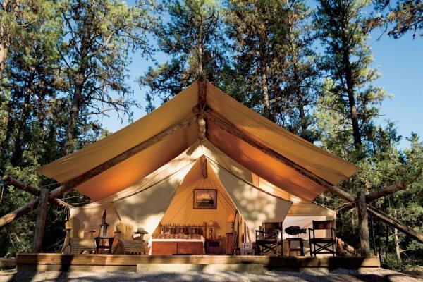 Camp Native:暴风般成长,掀起露营热潮