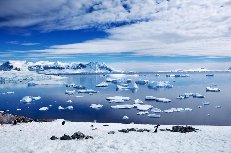 海航:中国商飞首登南极 凯撒明年推出极点旅游