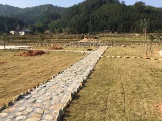 福建:2016年美丽乡村建设负面案例的通知