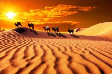 """蚂蜂窝:解析""""一带一路""""推热的国内旅游城市"""