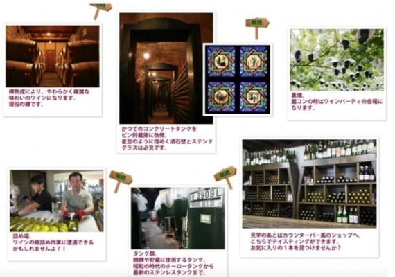 日本:山梨县三大城市合作推出葡萄酒度假村