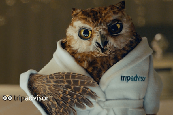 TripAdvisor:Q1收入状况良好 核心业务仍艰难