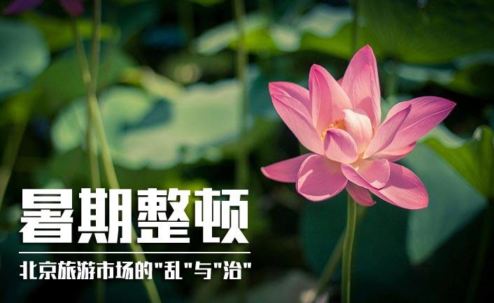 解读:暑期整顿,北京旅游市场的