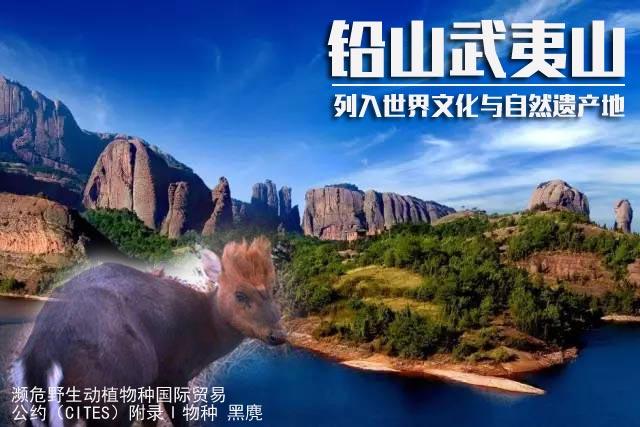 铅山武夷山: 通过审议 江西首个世界双遗产诞生