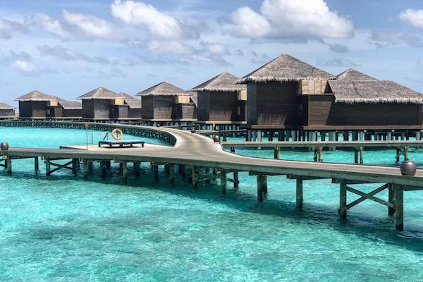 雅高集团:将接管并翻新更名马尔代夫一酒店