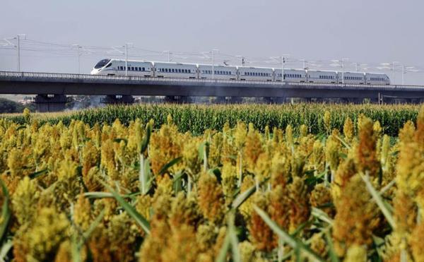 全国铁路今迎大调图:京沪高铁复兴号正式提速
