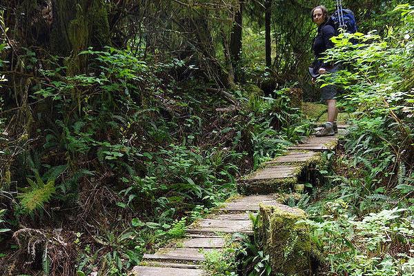 交互式地图:帮助徒步游客找到鲜为人知的路线