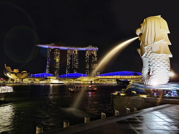 """新加坡:生态特色旅游城市  """"大棒""""底下的花园"""
