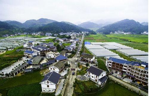 农业农村部:开展休闲农业和乡村旅游升级行动
