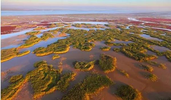 国家林草局:国家公园立法已形成专家建议稿