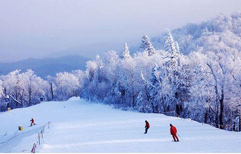 国家局:落实市场监管和加强冬季旅游热点整治