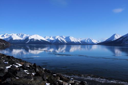 阿拉斯加:发生8.2级地震 携程启动应急预案