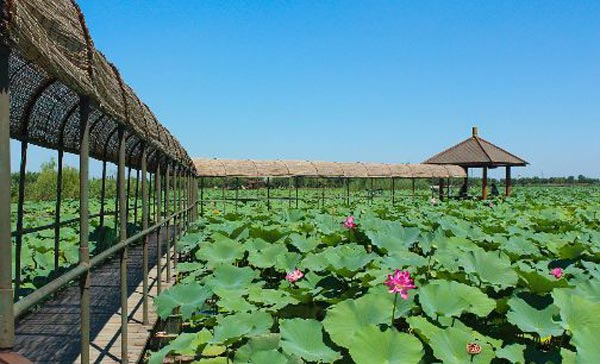 河北:借力雄安打造京津冀世界旅游品牌