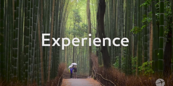 Expedia:公布2017财报 全年营收增长15%