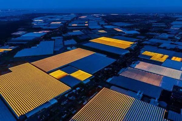荷兰:农业特色小镇如何搞得这么有声有色?