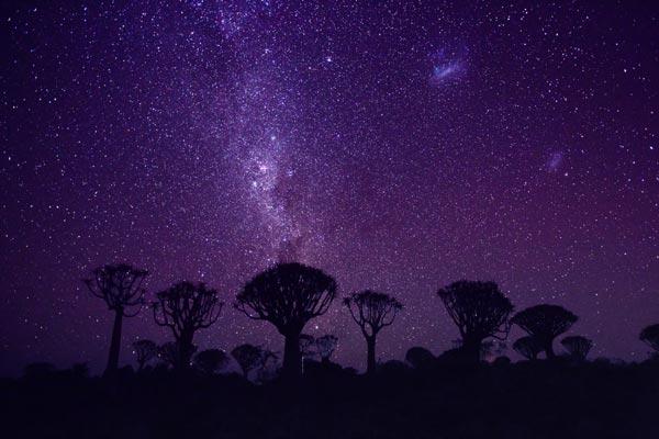 世界邦:深入纳米比亚 枕星河入梦 与动物狂欢