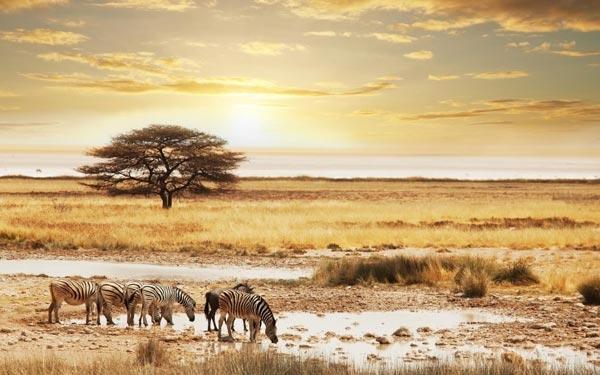 namibiya180613d