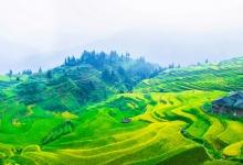 湖南:加大推动梯田农业文化遗产可持续发展